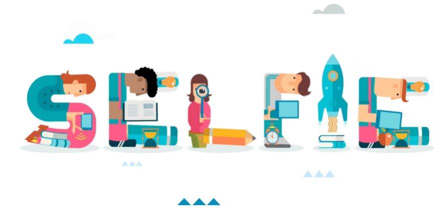 SELFIE for Work-based Learning